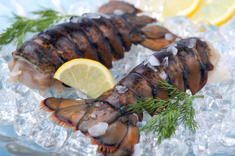 Fish Tips – Cooking Tips for Frozen Lobster Tails